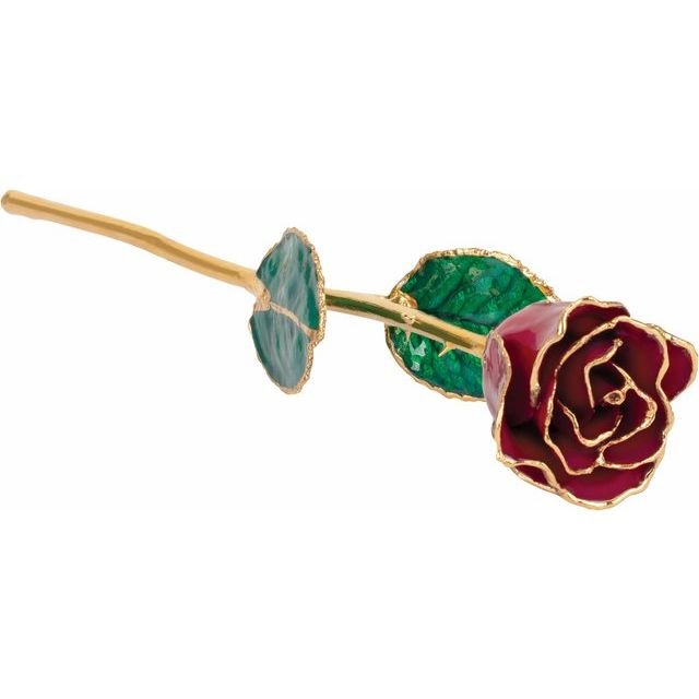 Lacquered Garnet Colored Rose with Gold Trim
