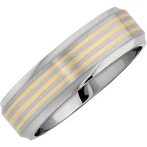 Titanium Beveled-Edge Band